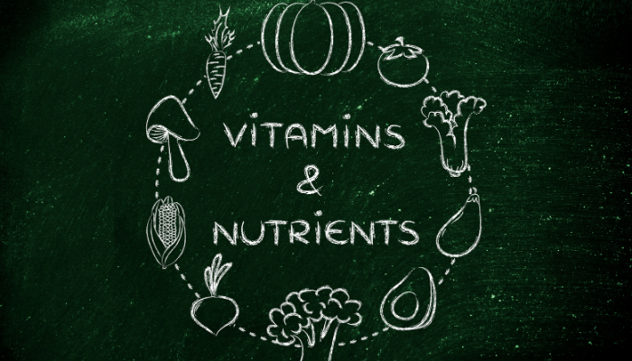 The 7 Nutrients and Why They Are Important